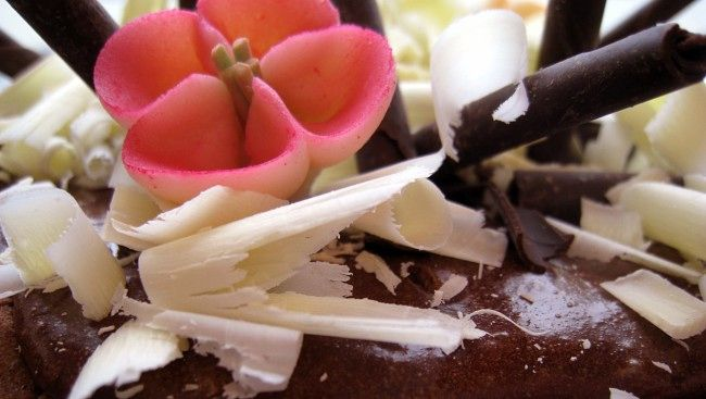 Heftig sjokoladekake (Foto: Hanne Hoftun/NRK)