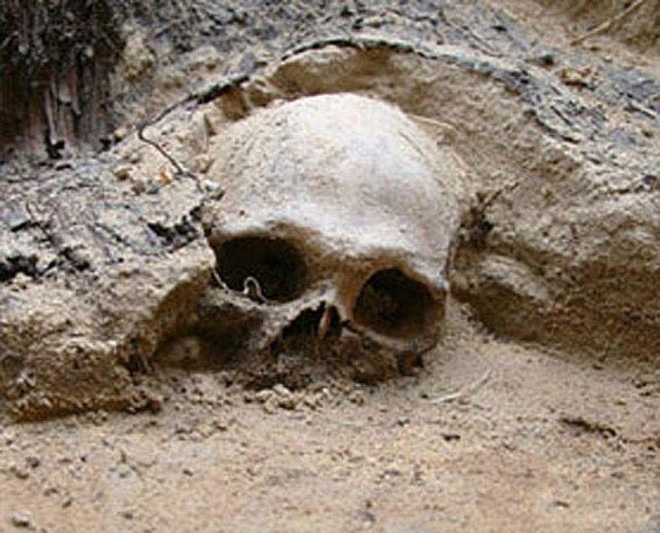 Сенсационные артефакты.Бессмертные существа Боржомского ущелья..Странное...