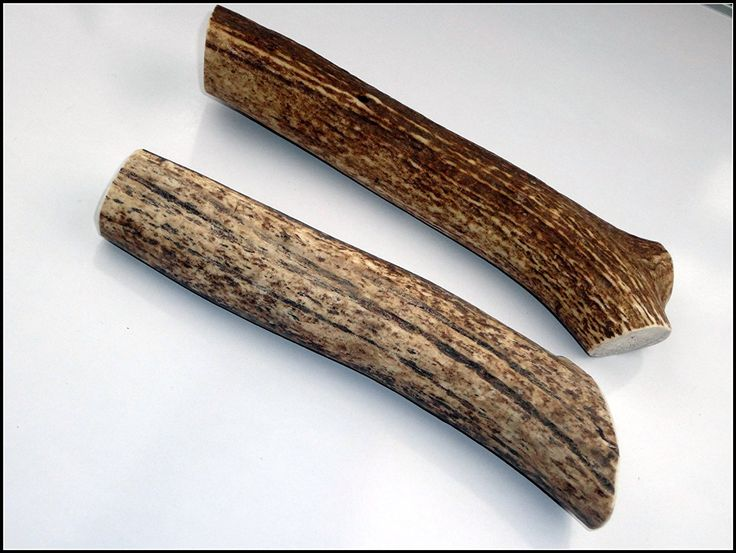 JimHodgesDogTraining - Grade A Premium Elk Antler Dog Chew - Large Whole 2-Pack (6.5-12 inches) - Great For Medium to Large Dogs and Puppies - Made in USA - Long Lasting, Healthy, Organic, Odor Free ** Want to know more, click on the image.