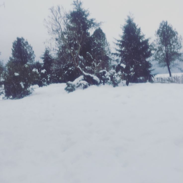 Snow in bc
