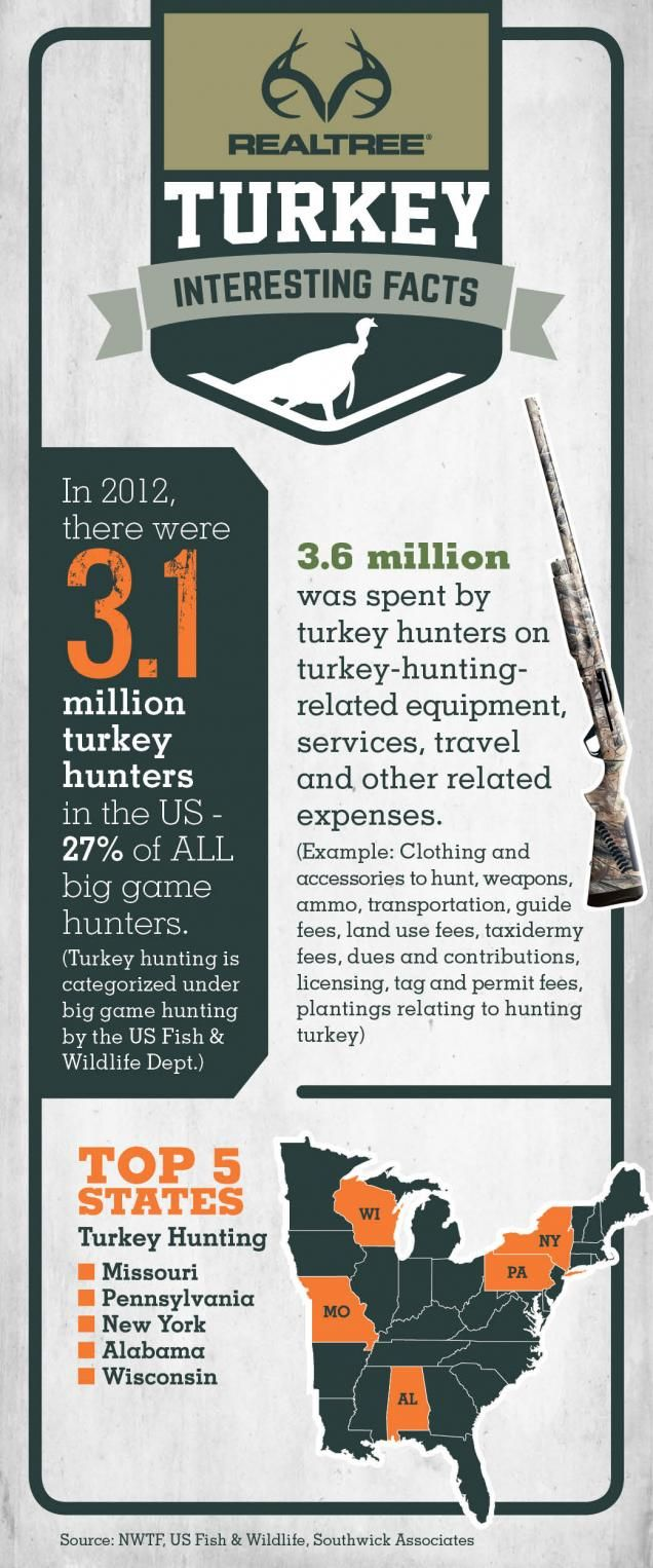 Turkey Hunter Stats  #Realtreeinfographics
