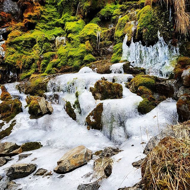 【hongaxiu】さんのInstagramをピンしています。 《時間凝結 #Mt. Sylvia #Second higher mountain of Taiwan #Black forest #forest #blackforest #beautiful #ice #icefall #waterfall #綺麗 #美 #冰 #冰瀑 #瀑布 #黑森林 #森林 #snow #雪 #雪山》