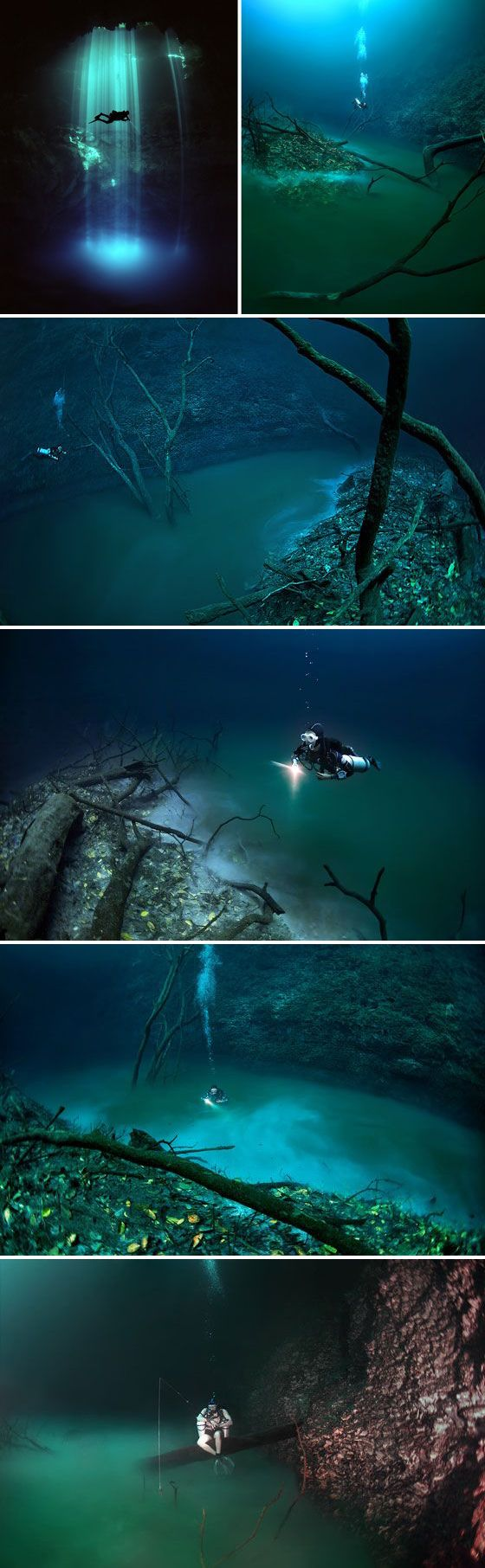 """Underwater River in Cave, Mexico's Yucatan Peninsula called Cenote Angelita or """"Little Angel"""" Photographed by Anatoly Beloshchin"""