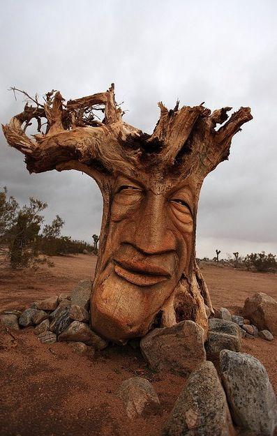 How great! Beautiful carving of a damaged tree.