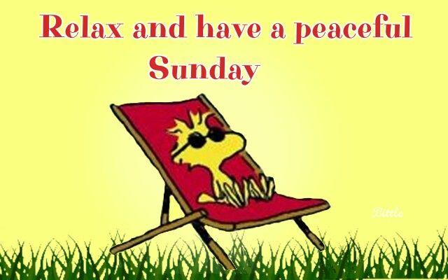 Good Morning Everyone Sunday : Good morning everyone have a lovely sunday things i