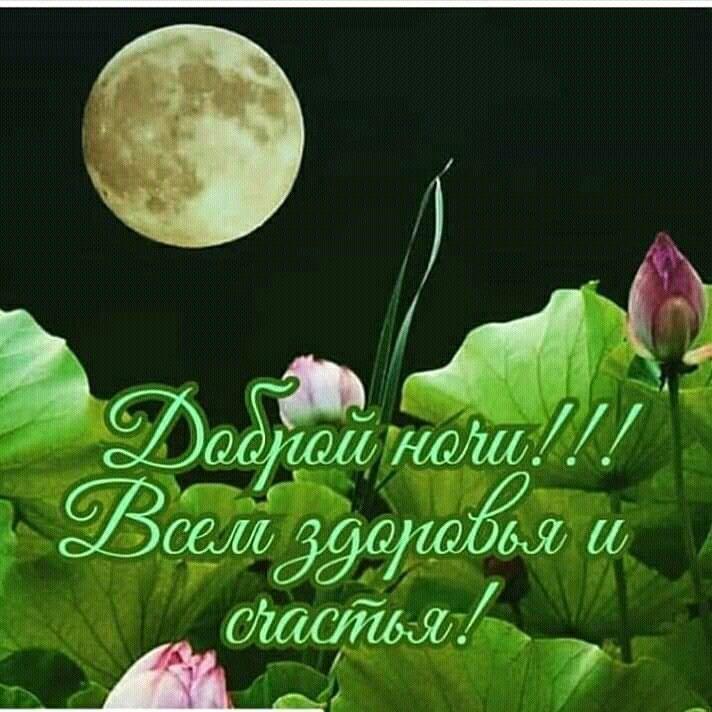 Открытки с доброй ночью и хорошим днем