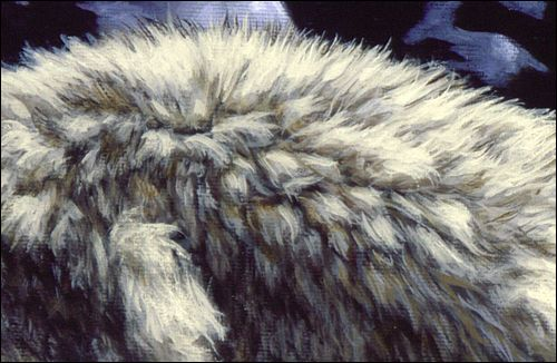fur round brush ....a How To Paint article. Very good.                                                                                                                                                                                 More