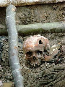 Srebrenica massacre - Wikipedia, the free encyclopedia