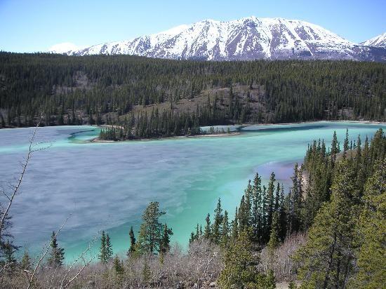 Emerald Lake, Skagway, Alaska. See the world with Princess Cruises. #PrincessCruises #travel #escape Photo by (Garyt123, Jun 2010).