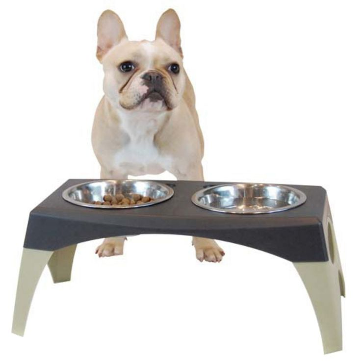 Bergan Pet Products Elevated Feeder Stormcloud Elevated Dog Feeder Dog Feeder Elevated Feeder