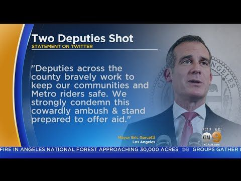 Los Angeles Mayor Eric Garcetti And Other Local State And National Leaders Strongly Condemned An Unprovoked Shooting Attack On Two Lo