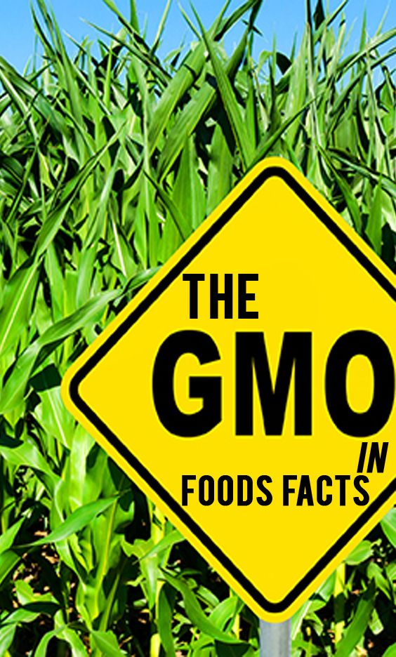 The problem is, 90 percent of canola and cotton, 88 percent of corn, 94 percent ofsoy, 95 percent of sugar beets and most of papaya grown in the U.S. is genetically modified, which is literally in everything, according to The Non-GMO Project.