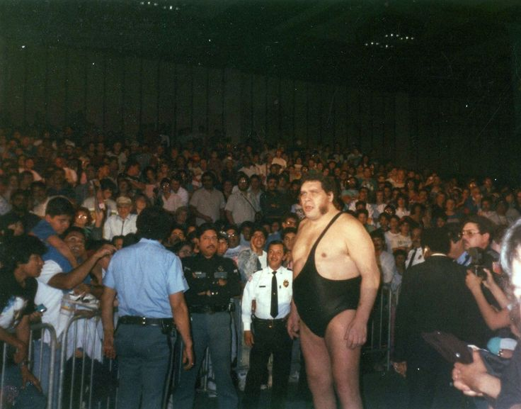 Amazing amateur photos of wrestling superstars from the 1980s are pure WWF gold