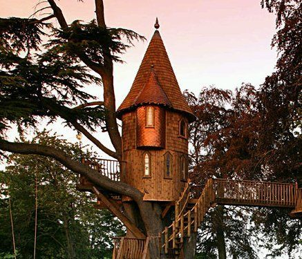 An out of this world treehouse for the backyard