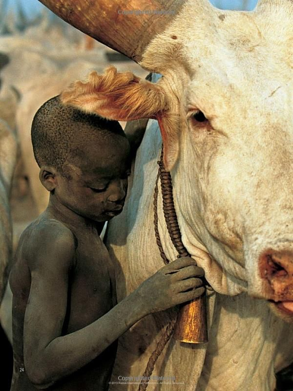Dinka: Legendary Cattle Keepers of Sudan: Angela Fisher, Carol Beckwith:
