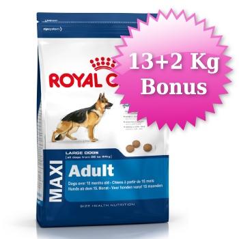 Royal Canin Maxi Adult Büyük Irk Yetişkin Köpek Maması 13+2 kg BONUS