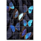 Flower Photo Wall Tile Mural F263 - Traditional - Tile Murals - by Picture-Tiles