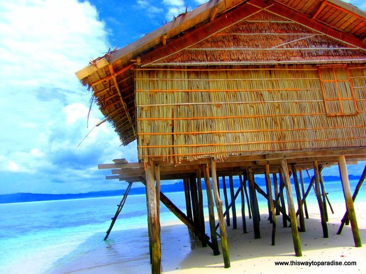 Raja Ampat dive shack on the beach raja ampat Paradise ...