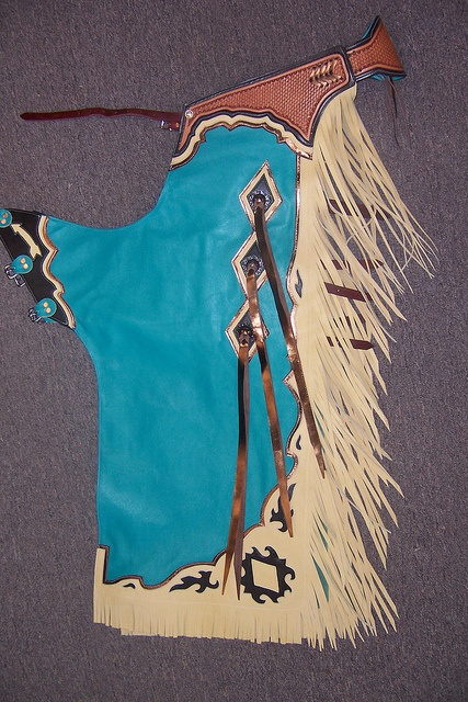 Beastmaster Rodeo Custom Rodeo Chaps http://www.beastmasterrodeo.com/custom-rodeo-chaps/