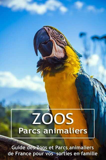 ZOOS ET PARC ANIMALIERS Le Guide des Zoos et Parcs animaliers de France - Faîtes le plein d'idées de sorties en famille avec les enfants !  #sorties #enfants #zoos #animaux  #idées  #famille #activités #parc #animalier