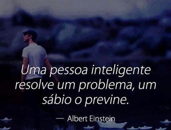 Uma pessoa inteligente resolve um problema, um sábio o previne. (Albert Einstein)