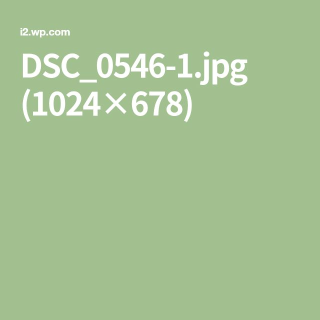 DSC_0546-1.jpg (1024×678)