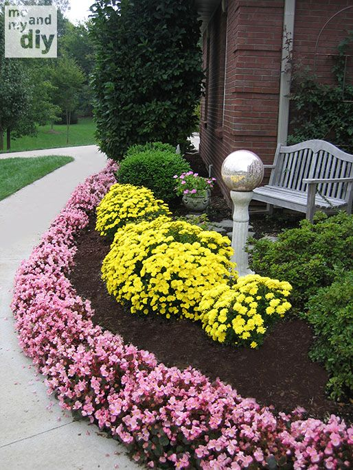 How To Plant Nearly 200 Annuals In One Hour