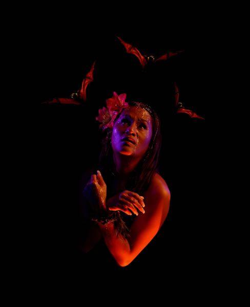 Tonumaipe'a; How She Was Saved by the Bats (2004)