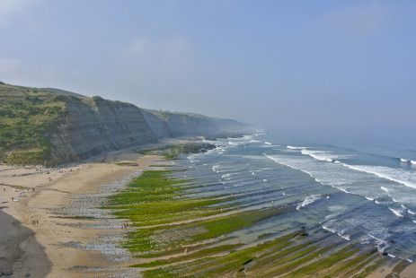 One of the most amazing beaches for watching tide pools (or just for a nice morning walk)!