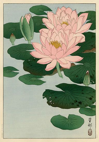 Flowering Waterlilies by Ohara Koson