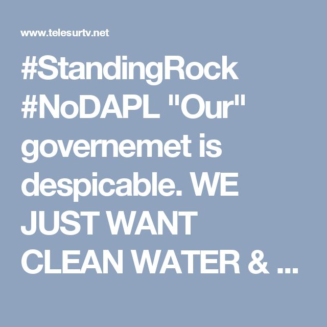 """#StandingRock #NoDAPL """"Our"""" governemet is despicable. WE JUST WANT CLEAN WATER & the elites will kill us all if we stand in front of their profits.  Military-Style Raid Ends Native Prayer Against Dakota Pipeline 