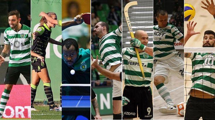 http://www.record.pt//multimedia/fotogalerias/detalhe/sporting-passa-o-natal-como-lider-nestas-sete-modalidades.html