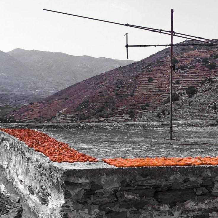 Sun dried tomatoes / Making process / Stone house roof #tinos #tinos_isl #tinos_island #aegeanislands #aegeanfood #greekfood #sundriedtomato #mysummer #traditionalvillage #ontheroofs #agapivillage #greece