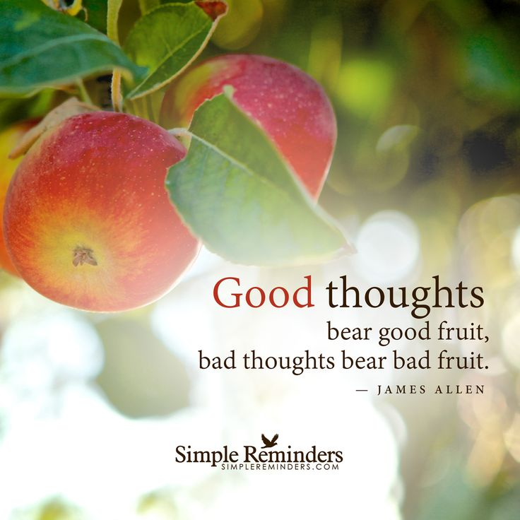Good Morning Quotes With Fruits: 69 Best Images About Positive Thinking On Pinterest