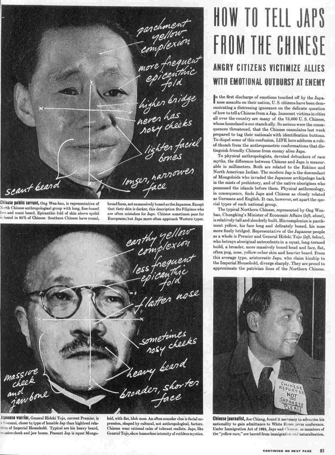 "LIFE Magazine, December 22, 1941: ""How to tell Japs from the Chinese"""