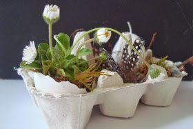 Kleefalter: dekorierter Eierkarton verschenken...