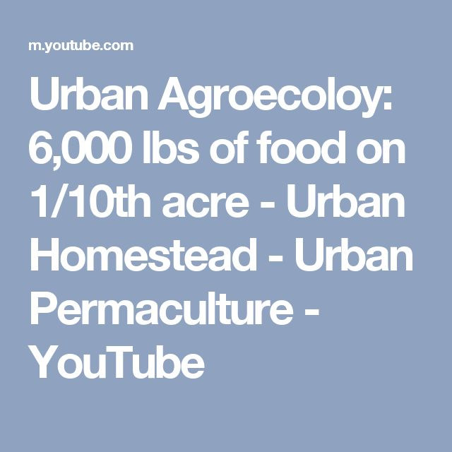 Urban Agroecoloy: 6,000 lbs of food on 1/10th acre - Urban Homestead - Urban Permaculture - YouTube