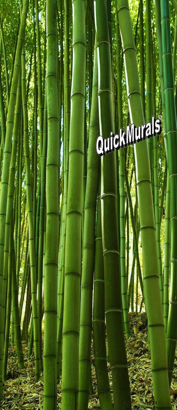Bamboo grove door mural wall murals pinterest door for Bamboo wall mural