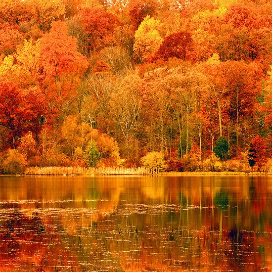 In Pennsylvania during Fall colors - This is true, Autumn in Pennsylvania is breathtaking...