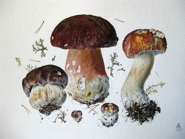 Resultado de imagen de вяземский александр художник