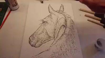 Amazing artist that uses gunpowder.   Original video Copyright: Paint With Gunpowder https://www.facebook.com/paintwithgunpowder/?fref=photo https://video.buffer.com/v/572831165cb2eecb68f2582a