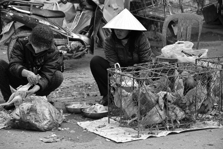 Dong Hoi – Northern Vietnam | Image Earth Blog