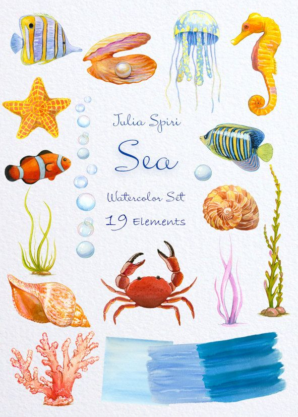 Watercolor Sea Clipart Marine Ocean Fish Starfish by JuliaSpiri