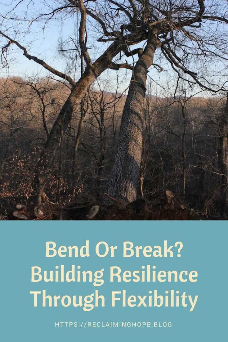 Build more resilience by building more flexibility into your life