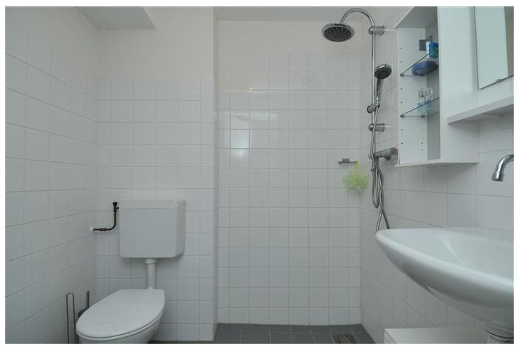 De badkamer beschikt over een douche, toilet en een vaste wastafel.