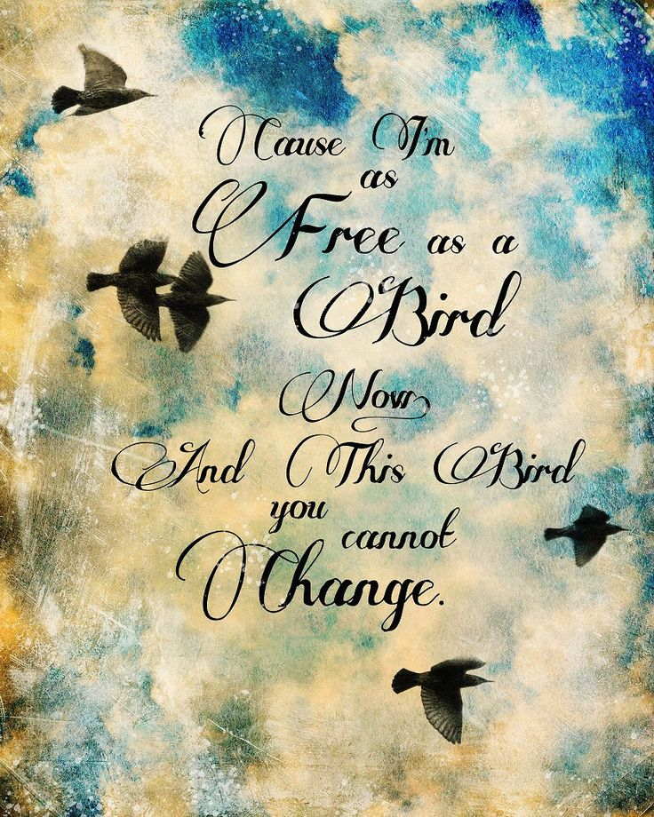 'Cause I'm as free as a bird now, and this bird you cannot change.  -- Lynyrd Skynyrd