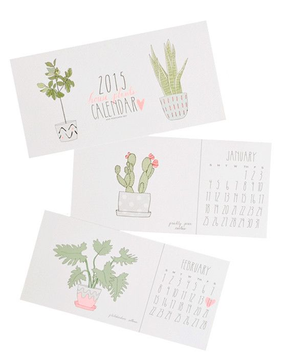 houseplants 2015 postcard calendar