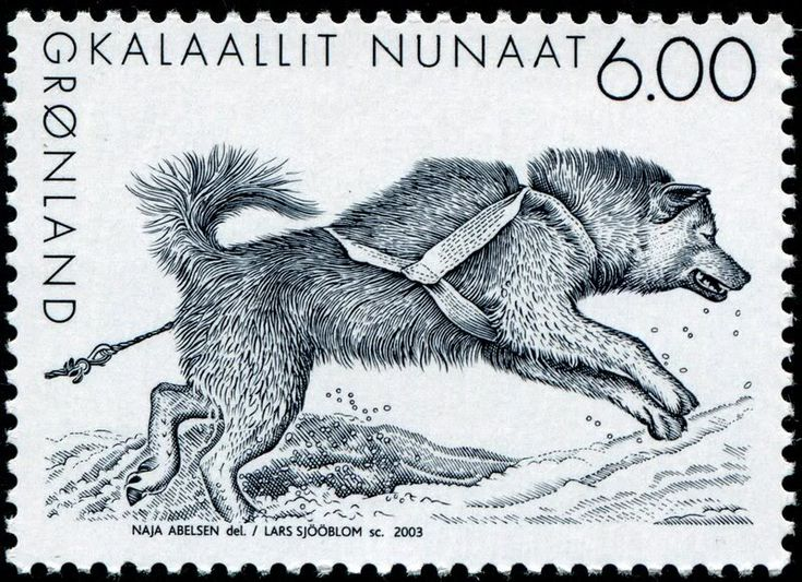 "A series of three slegdedog stamps, done by Naja Abelsen for Post Greenland. Gravure by Lars Sjöblom.  www.najaabelsen.dk ""Gotta LOVE THOSE DOGS! - Stamp Community Forum - Page 6"""