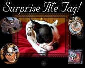 "Surprise Me Tag........ A custom unique one of kind Pet ID Tag for your furkid...3/4"" to 1"". $16.00, via Etsy."