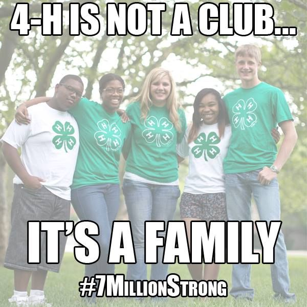 Are you in the family? Minnesota 4H and Wright County 4H... Best 4H Families I could ever ask for:)